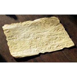 Papier parchemin vierge